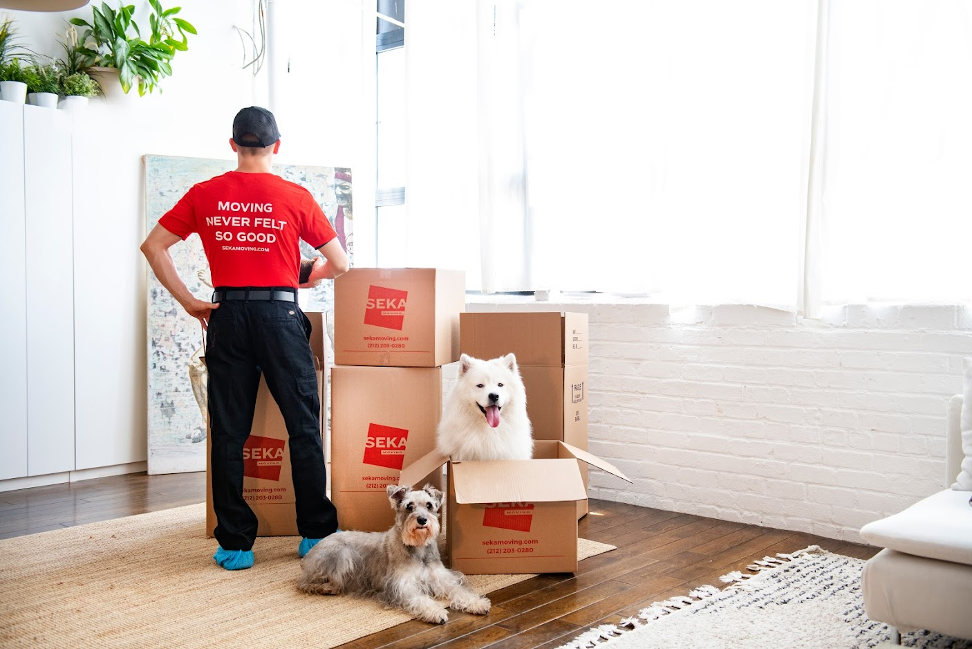 Expert Tips to Find the Best Commercial Movers Near Me