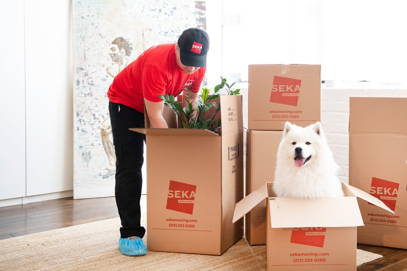 How to Relocate with Ease Using Mobile Office Movers