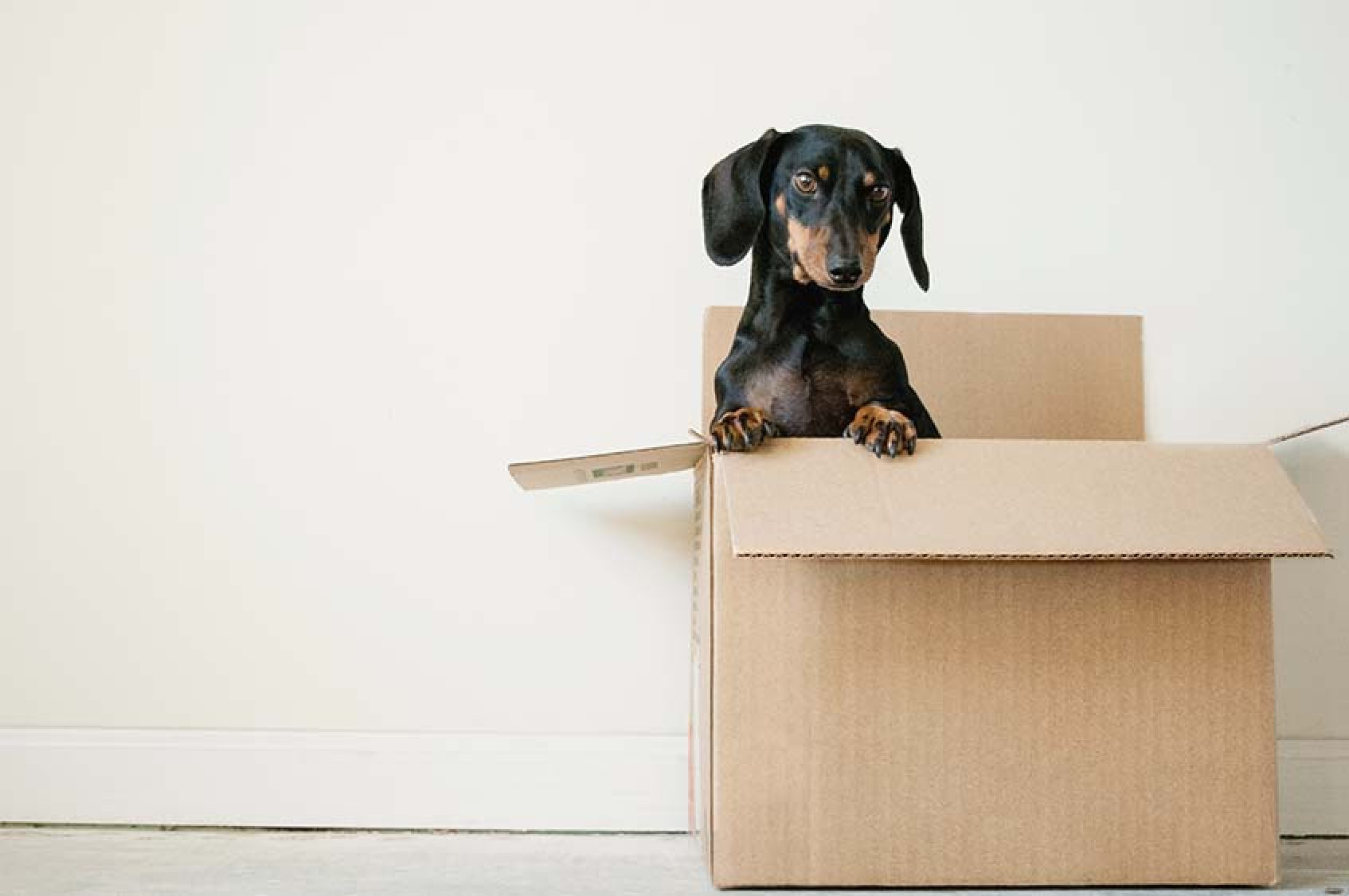 What To Do Before Moving Day